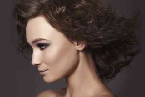tracey cole  hair and beauty - Cut and Blow Dry With Conditioning or Highlights - Save 0%