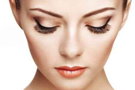Top Touch Salon - 3D Brows Eyelash Extensions - Save 60%