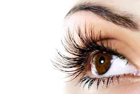 Prim and Propa - Semi-Permanent Eyelash Extensions With Brow Shape and Tint - Save 0%