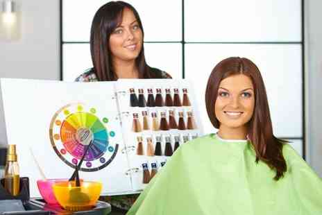 The Dressing Room - Cut, Blow Dry and Full Head of Permanent Colour - Save 55%