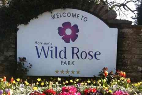 Wild Rose Park -  One Night Camping or Caravan Pitch  - Save 58%