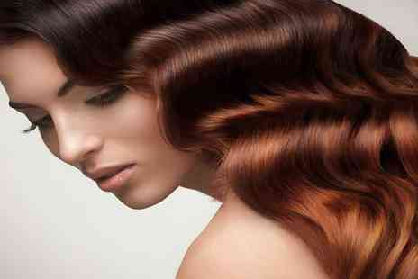 The Arch - Cut, condition and blow dry, - Save 75%