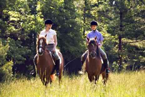Barleyfields Equestrian Centre - Riding Tuition or Hacking For One Child - Save 63%