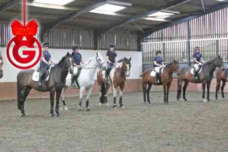 Brooksby Equestrian Centre - One Hour Horse Riding Lessons - Save 40%