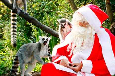 Bristol Zoo Gardens - Entry to Bristol Zoos Enchanted Christmas - Save 50%