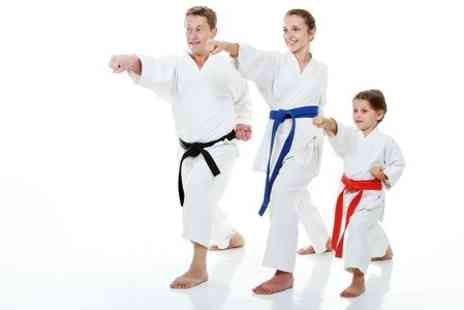 Martial Arts - Four Taekwondo or Kickboxing Lessons - Save 73%