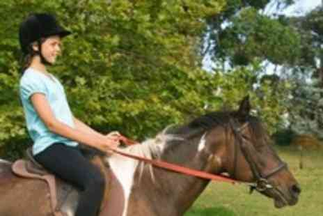 South Causey Inn - Childs Horse Riding Lesson - Save 59%