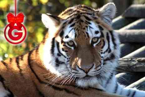 Paradise Wildlife Park - Half Day Wildlife Photography Experience - Save 40%