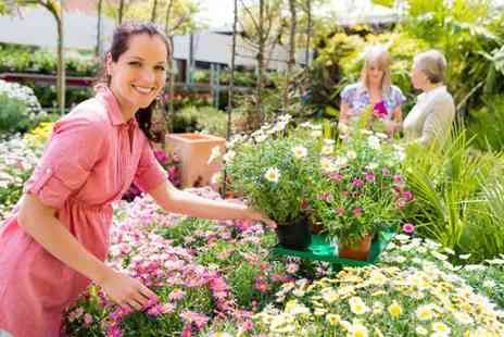Southwell Garden Centre - £20 Voucher towards gardening products - Save 50%