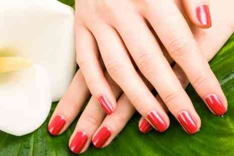 Sante Spa - Shellac Manicure or Pedicure - Save 0%