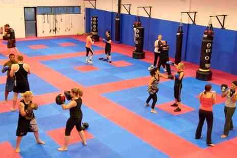 Martial Arts - Five Fitness Classes  - Save 0%