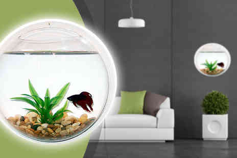 SSSuper store - Wall Mounted Fish Tank - Save 48%