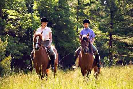 Sawston Riding School - 30 Minute Horse Riding Lessons - Save 0%