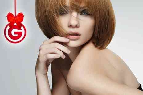 Chez Stephan - Cut, Blow Dry and Highlights  or Brazilian Keratin Treatment - Save 66%