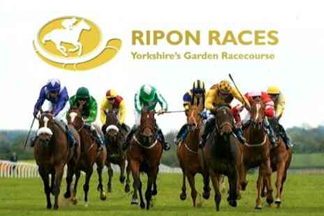 Ripon Races - Horse Racing Evening Event Ticket with Club Enclosure Access and Race Card for £8.80 - Save 60%