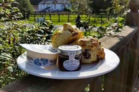 The National Stud - Cream Tea For Two  - Save 0%
