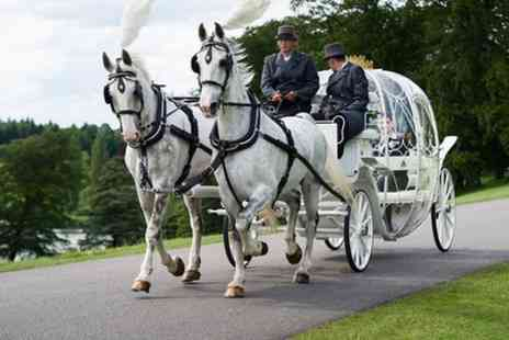 The Ostler - One Hour Horse Drawn Carriage Tour With Photo Stops, Chocolates and Red Rose - Save 0%