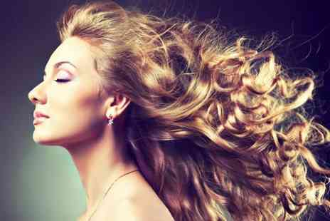 Purple Rose Salon - T section highlights, blow dry and a glass of bubbly - Save 58%