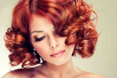 Mohini - Full head of colour, restyle and blow dry -  Save 70%