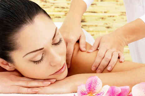 LaVissa Beauty - 30 minute facial and 30 minute Swedish back massage - Save 67%