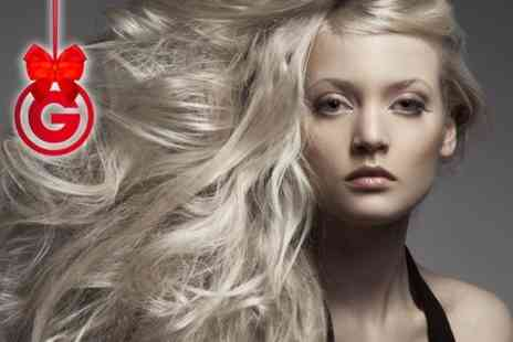 Jean Mays Hair - Haircut and Blow Dry - Save 64%
