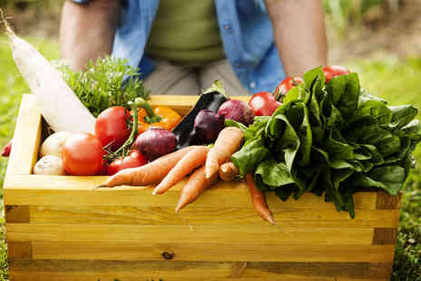 Over Farm Market - Fresh Vegetable Box - Save 50%