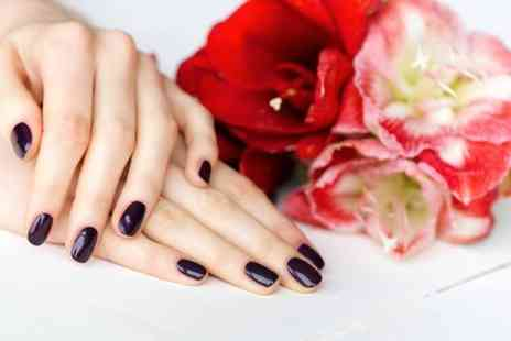 Beauty and Cut - Shellac Manicure and Pedicure - Save 48%