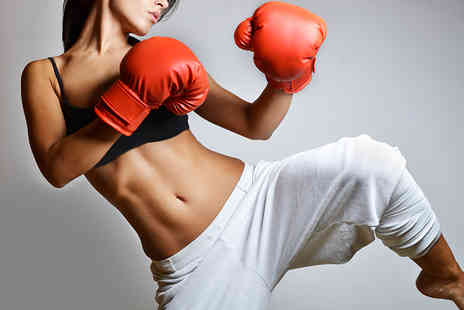 Kickbox - One hour kickboxing sessions  - Save 75%