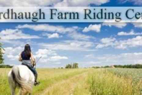 Wardhaugh Farm Riding Centre - Two Horse Riding Lessons or Two Hour Hack - Save 60%