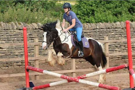 Coloured Cob Equestrian Centre - Young persons own a pony experience day including 10 images on CD  - Save 42%