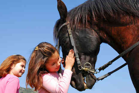 Grenoside Equestrian Centre - Kids Pony Party Including Pony Ride and Grooming Time for Six  - Save 60%