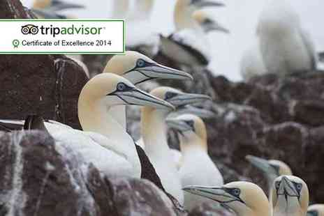 The Scottish Seabird Centre - Entry for 2 adults to the award winning - Save 66%