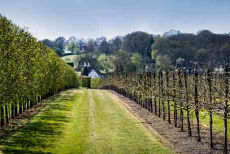 Hush Heath Winery - Award Winning Winery Tour & Afternoon Tea for Two - Save 34%