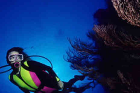 Aquasport International - Two hour Scuba diving experience - Save 60%