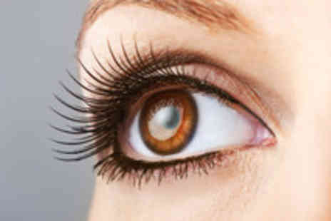 Th Arch - Individual Lashes - Save 50%