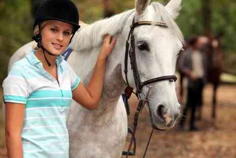 Lee Hill Riding School - One session of hour private horse riding  - Save 72%