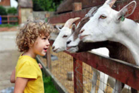Kent Life - Tickets to Kent Life for Kents Rural Heritage Experience - Save 0%