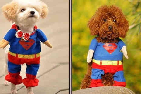 Wholesale Solutions - Let your pooch feel like a hero with the Dog Superman Costume  - Save 54%