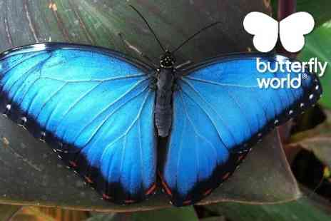 Butterfly World Project - Entry  to Butterfly World Project  - Save 54%