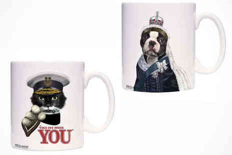 Pets Rock Mug - Pets Rock Mug in a Choice of 70 Designs - Save 44%