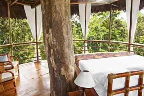 The TreeHouse  -   All Including Treehouse Stay with Tours - Save 36%