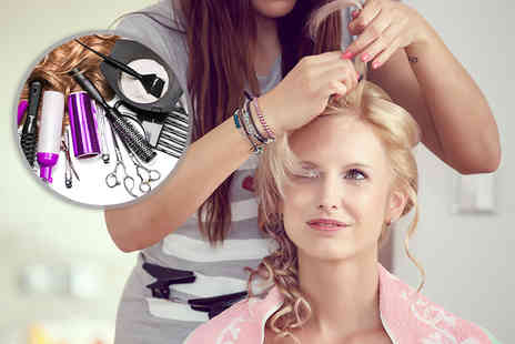 Trendimi - Online ICOES accredited extensions and hair styling expert course - Save 85%