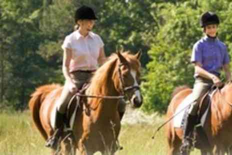 Brimington Equestrian Centre - Two Horse Riding Lessons For Two People - Save 62%
