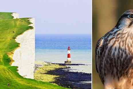 Devonshire Park Hotel - One Night stay with Falconry Experience tickets and more - Save 39%