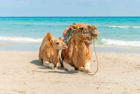 Just Sunshine -  Seven night all inclusive Tunisia holiday including  flights, meals, snacks and drinks  - Save 24%