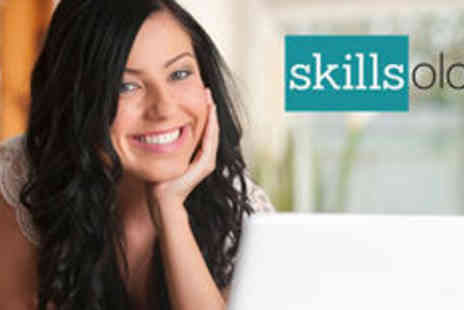 Skillsology - Online Excel Training - Save 0%