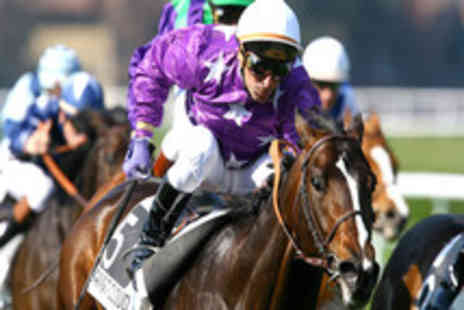 Newcastle Racecourse - Premier Grand National Ticket - Save 60%