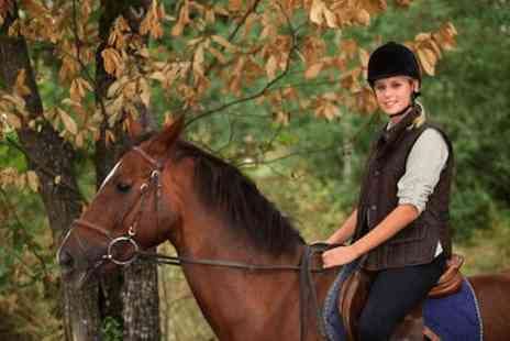 Grange Trekking - Horse riding experience  - Save 60%