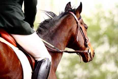 Matchmoor Riding Centre - Private Horse Riding Lesson Plus Trek  - Save 51%