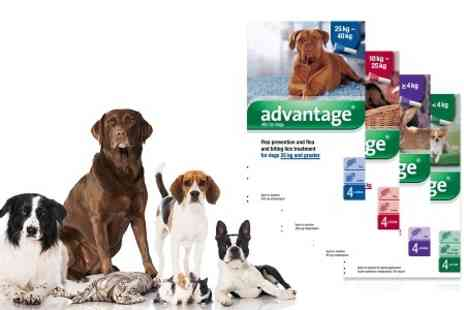 VetePet - Advantage Flea Control for Cats, Dogs and Rabbits With Free Delivery - Save 8%